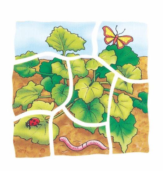 Beleduc Vývojové vrstvené puzzle DÝNĚ