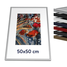 Kovový rám 50x50 cm - Elox stříbro mat 1-04