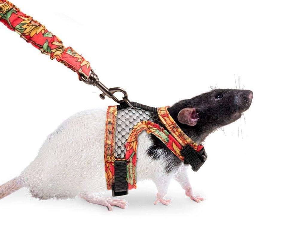 Karlie postroj s vodítkem pro potkany S