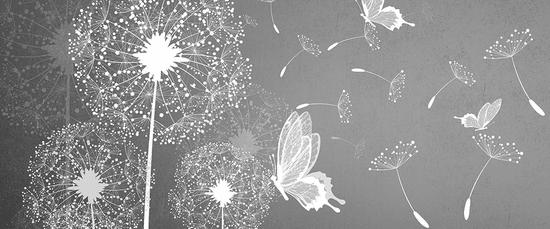 Vavex Vliesová obrazová tapeta Chmýří pampelišek 44102, 250 x 104 cm, Photomurals, Vavex