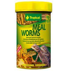 TROPICAL Meal worms 100ml/13g prírodné krmivo pre plazy