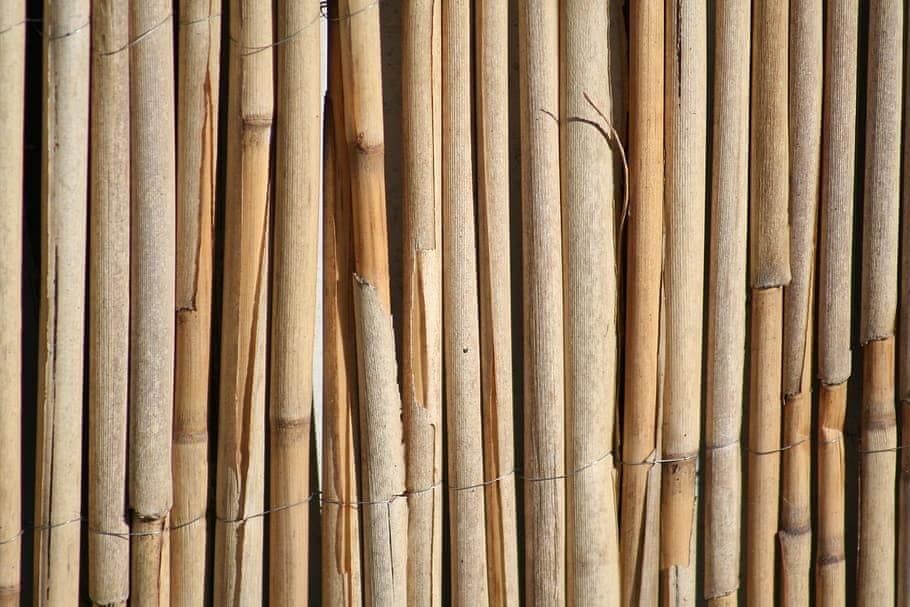 Maxpack Rákos na plot 1 x 5 m rohož rákosová plotová rohož