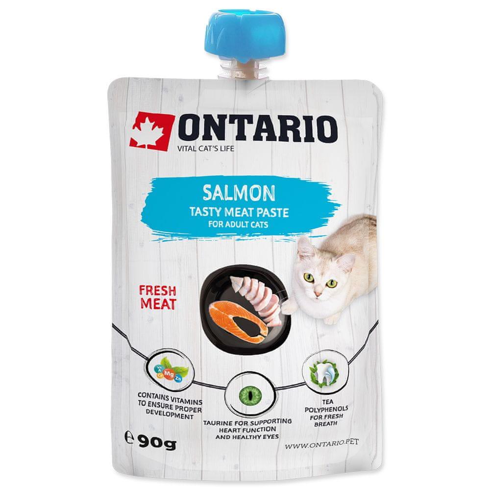 Ontario Salmon Fresh Meat Paste 10x90 g
