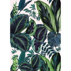 Caselio Digitální panel Caselio 100197812, kolekce Jungle