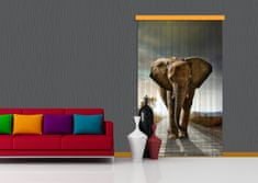 AG design Textilní závěs ELEPHANT FCPL6507, 140 x 245 cm (1 ks), úplné zastínění