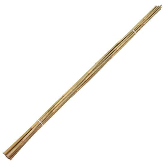 shumee Vrtne bambusove palice 50 kosov 120 cm