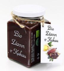 Dr. Hlaváč BIO Zázvor v Kakau 275 g čokoláda BEZ přídavku CUKRU