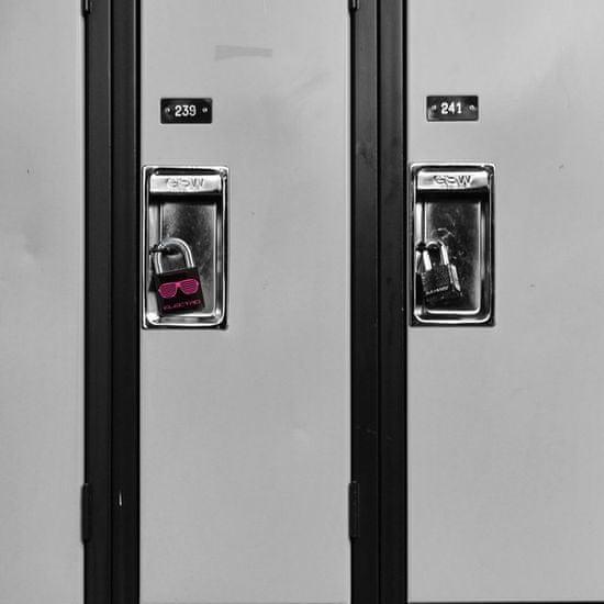 MasterLock Visací zámek Master Lock z pevného hliníku 3430EURDELEC - 30mm