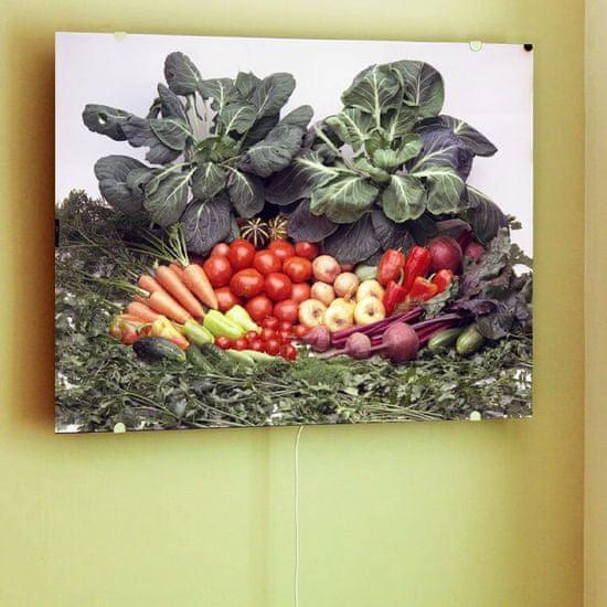 INFRADŮM Sálavý topný panel s potiskem 80x60cm, 500w