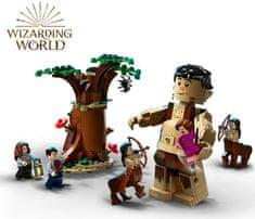 LEGO Harry Potter 75967 Prepovedani gozd: Srečanje Drápe in profesorja Umbridgea