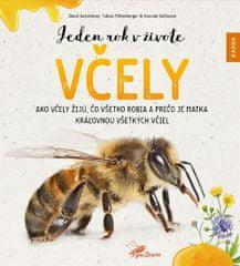 Gerstmeier David, Miltenberger Tobias, G: Jeden rok v živote včely - Ako včely žijú, čo všetko robia