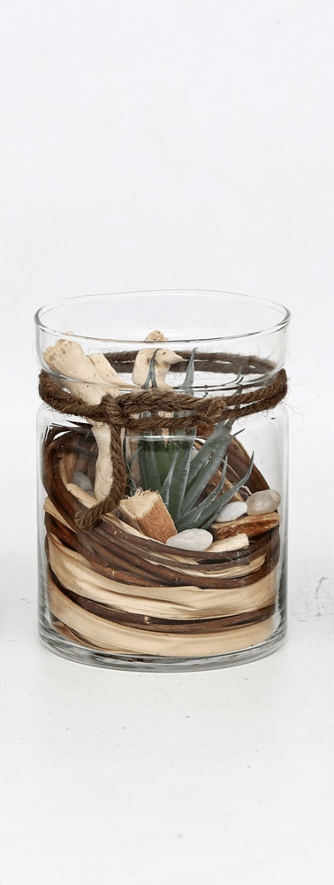 Sifcon Dekorativní sukulent ve skle C, 13x10 cm