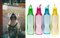 boca 2u1, prijenosna, za pse, 450 ml, zelena