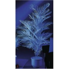 Europalms UV Kentia, 90cm