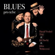 David Vrobel: Blues pro tebe