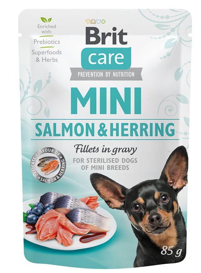 Brit Care Mini Salmon&Herring sterilised fillets in gravy 24x85 g