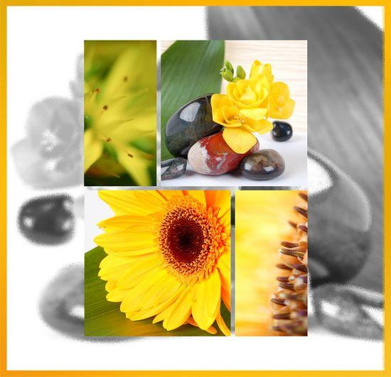 FANDY Fotoalbum samolepicí 27x32,5 cm 60 stran Art 2 žluté