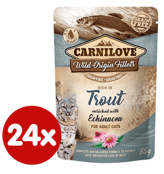 Carnilove Rich in Trout Enriched with Echinacea 24x85 g