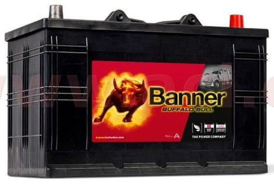 Banner 110Ah baterie 800A, pravá BANNER Buffalo Bull 344x175x214(230) 61011