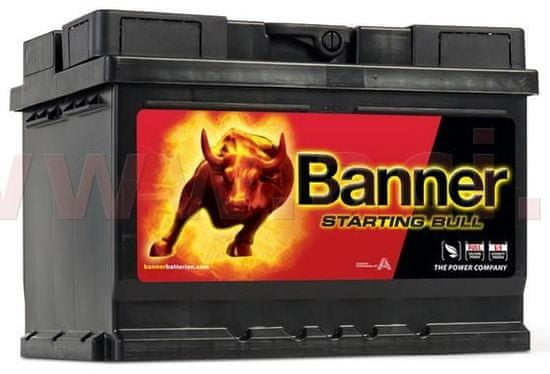 Banner 60Ah baterie 480A, pravá BANNER Starting Bull 241x175x175 56009