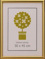 Karako Foto okvir 30x45 cm, plastika, stenski, 95 zlat
