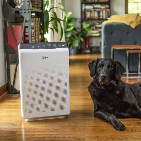 Winix ZERO čistička vzduchu + sada náhradních filtrů zdarma
