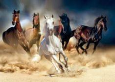 AG design fototapeta Osupljiva konjska dirka, 156 x 112 cm