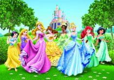 AG design fototapeta Disneyjevih princesk, 360 x 254 cm, 4 kosi