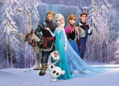 AG design fototapeta Heroji Frozen v gozdu, 160 x 110 cm
