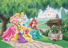 AG design fototapeta Disneyjeve princese s svojimi ljubljenčki, 160 x 110 cm