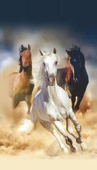AG design Záclona Koně různých plemen 140 x 245 cm 1 ks