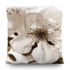 AG design Dekoratívny vankúš Kvety jabloní 45 x 45 cm