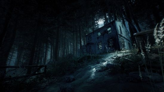 Deep Silver Blair Witch igra (PC)