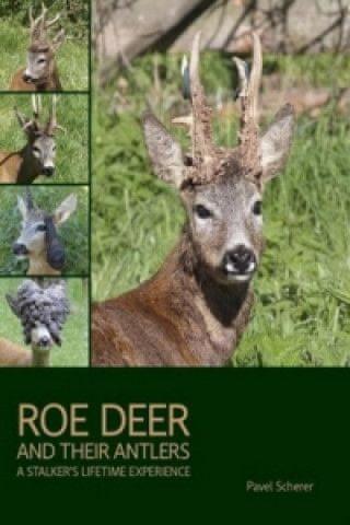 Roe Deer and their Antlers