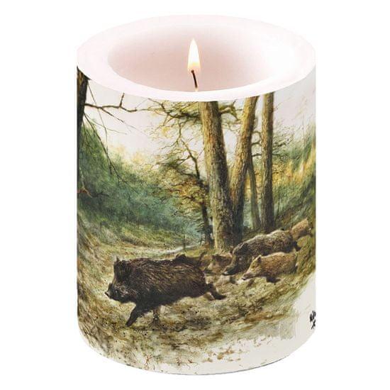 AKAH Svíčka s mysliveckým motivem divokých prasat