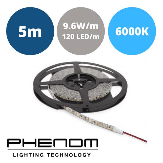 PHENOM LED trak 5m 9,6W/m IP20 hladno beli 6000K