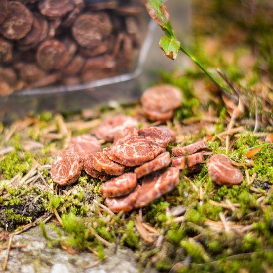 Akinu priboljški za pse jagnječji čips s polenovko, 400 g