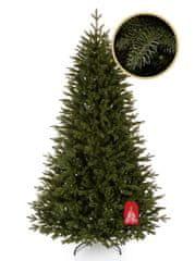 Božično drevo Kanadska smreka 220 cm