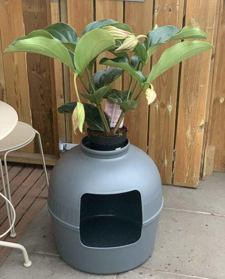 RHR Quality Flower XXL plastični WC Grey