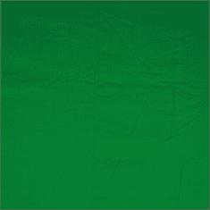 LumArt Fotografické pozadie 6x3m zelené bavlna