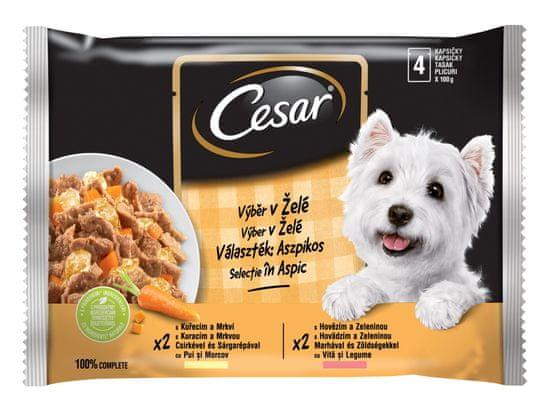 Cesar kapsičky pre dospelých psov výber v želé 52x100 g