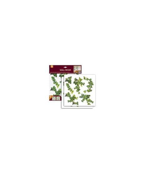 Crearreda WA M Ivy 54152 Břečťan