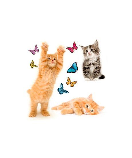 Crearreda WI M Cats 64001 Kočky a motýli