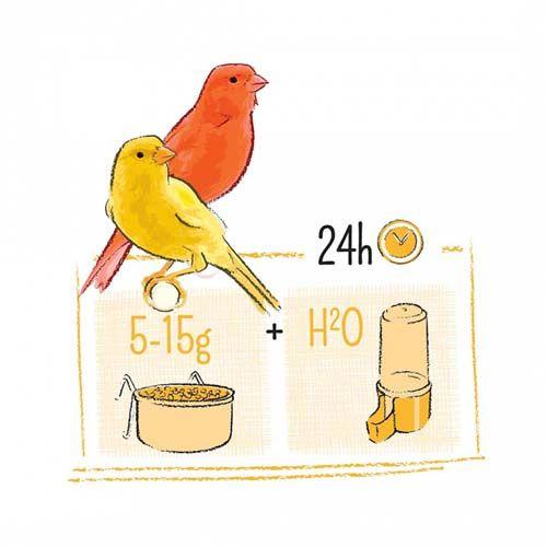 Witte Molen PUUR kanári madaraknak 2kg