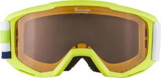 Alpina Sports gogle narciarskie Piney SH zielone