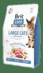 Brit Care Cat Grain-Free Large cats Power & Vitality 2 kg
