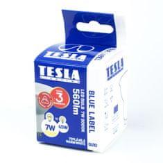 TESLA GU100730-6D žarnica