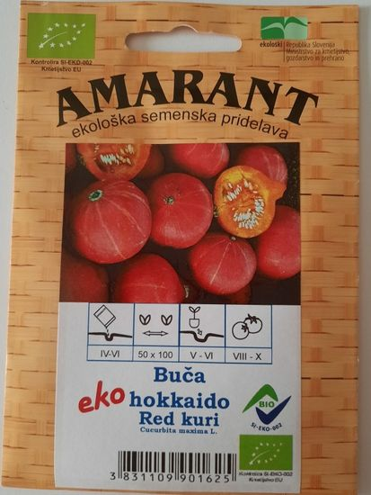 Amarant Buča hokkaido Red kuri, ekološko seme