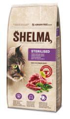 SHELMA polnozrnati briketi za mačke s svežo govedino in superhrano, 8 kg