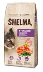 SHELMA bezobilné granule s čerstvým lososem a superpotravinami 8 kg